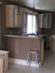 Kitchen Cabinets Windsor Ontario Entrancing 60 How To Paint Kitchen Cabinets White Without Sanding