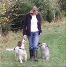 Daniels Dogs Dog Training Dog Walking and Pet Visits Caldicot