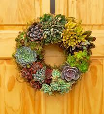 succulent wreath mixed succulent wreath flora pacifica