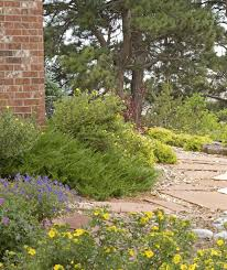 Xeriscape Landscaping Ideas The Brazos River Authority U003e About Us U003e Water Supply