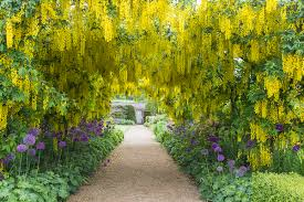 helmsley walled garden u2013 come and discover our relaxing garden