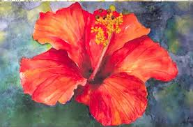which state has a hibiscus hibiscus flower watercolor tutorial an easy step by step lesson