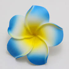 plumeria flower 30pcs blue plumeria flower hawaiian foam frangipani flower wedding