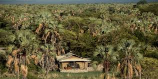 best safari lodges in africa chem chem safari lodge