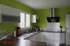 cuisine peinture idee deco peinture salon pour idees de deco de cuisine best of