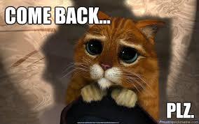 Sad Cat Memes - come back plz sad cat quickmeme