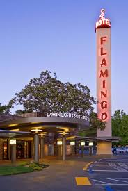 6 Family Friendly Hotels In Sonoma County