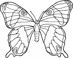 http colorings co free coloring pages flowers and butterflies