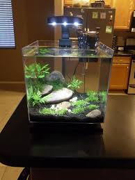 Small Tank Aquascaping Small Aquariums Set Up Beautifully Here Are 20 Ideas To Inspire