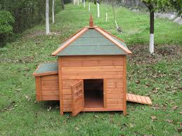 backyard chicken coops cheap build small backyard chicken coops