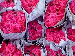Carnations In Bulk Flower Market Connaught Place New Delhi Wholesale Flowers Buy