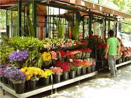 florists in list of florists in anand best flower shops in anand