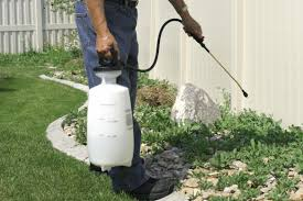 How To Remove Weeds From Patio How To Remove Weeds In A Sidewalk Or Driveway