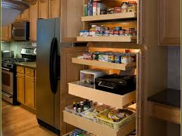 shelves modern white kitchen design plus kitchen pull out pantry