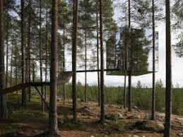 chambre dans les arbres archi une chambre dans les arbres par heju