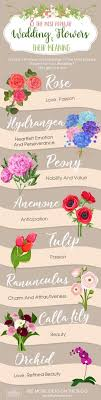 wedding flowers meaning 3 wedding flowers infographics that will help you