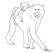 mohter and baby baboon coloring page free printable coloring pages