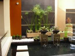 characteristic minimalist home garden style type plants water spray