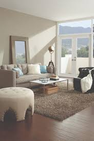Rugs For Living Room Ideas by 54 Best Runner U0026 Area Rug Ideas Images On Pinterest Rug Ideas