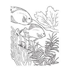 coloring pages biome coloring pages 9t4bxnelc biome coloring