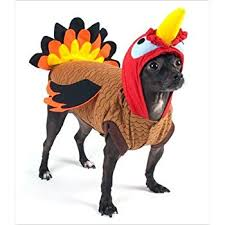 turkey deluxe thanksgiving costume for dogs