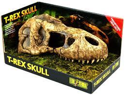 exo terra t rex skull reptile centre