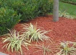 what is the best mulch benefits and drawbacks of various mulch