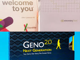 best dna test ancestrydna vs 23andme vs national geographic
