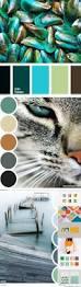 Pinterest Color Schemes by Best 25 Color Schemes Ideas On Pinterest Color Pallets Colour
