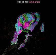 ammonite album