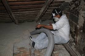 bay area attic and crawl space cleaning insulation removal