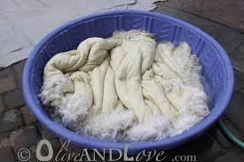 Lamb Skin Rugs Washing Sheepskin Rugs Roselawnlutheran