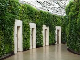 Wall Planters Indoor by Living Room 9 Fantastic Design Of The Indoor Wall Planters With