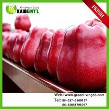 where can i buy candy apple mix buy gold medal candy apple mix concentrate in cheap price on
