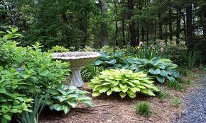 Cheap Landscaping Ideas Backyard with Cheap Landscaping Ideas Small Yard Garden Backyard Backyard