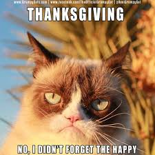 Frown Cat Meme - 14 best grumpy cat thanksgiving images on pinterest grumpy cat