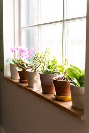 indoor kitchen garden ideas kitchen beautiful indoor kitchen herb garden ideas indoor herb