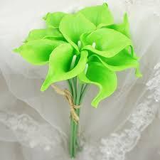 Lime Green Flowers - green flower amazon com