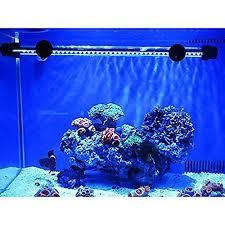 30 led aquarium light mingdak led aquarium light for fish tanks 30 leds 12 inch blue great
