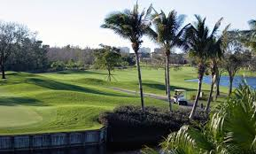 Comfort Suites Fort Lauderdale Homewood Suites Ft Lauderdale Airport Cruise Port Hotel