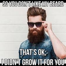 Thats Cool Meme - 50 funny beard memes that ll definitely make you laugh