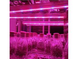 t5 vs led grow lights spl t5 18w hydroponics led grow light 1200mm led plant grow light tube