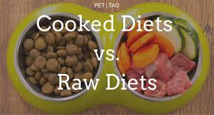 3 reasons cooked pet food is better than raw pet food