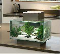 Fluval Edge Aquascape 6 Gallon Pewter Edge Aquarium By Hagen Fluval Nice Pinterest