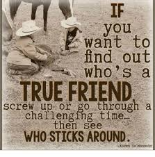 True Friend Meme - you want to find out who s a e true friend screw up or go through a