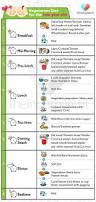 best baby diet chart for your 1 year old check out now