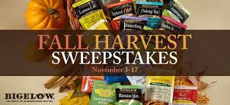 bigelow tea s thanksgiving sweepstakes is almost bigelow