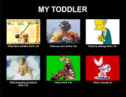 Toddler Memes - what do you do toddler tot memes pinterest parenting humor