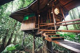 famous tree houses world famous tree house part of the costa rica tree house eco lodges