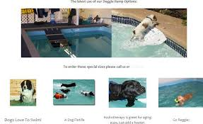 dock dog pools above ground pools experts new technology